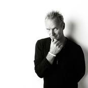 Sting - Shape of My Heart Songtext, Übersetzungen und Videos auf Songtexte.com