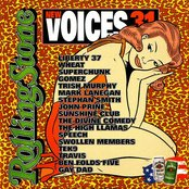 Rolling Stone: New Voices, Volume 31