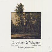 Bruckner, A.: String Quintet in F Major / Wesendonck-Lieder