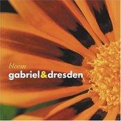 Bloom (disc 1)