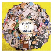 album Sheila by Jamie T
