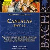 J.S. Bach - Cantatas BWV 1-3