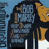 Tribute to Bob Marley (disc 1)
