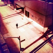 Awake in the City
