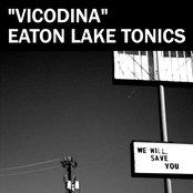 Vicodina