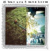 Di Bravura/Mane Horse Split