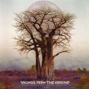 Sounds from the Ground - Where The Wild Things Were
