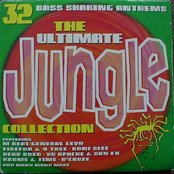 The Ultimate Jungle Collection