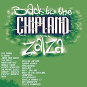 Back to the chipland