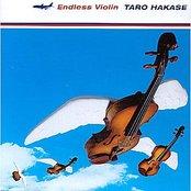 Endless Violin
