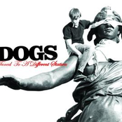 album Tuned To A Different Station by Dogs