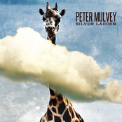 album Silver Ladder by Peter Mulvey