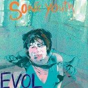 retro retry - sonic youth - evol