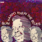 Slim Harpo Knew The Blues
