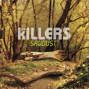 album Sawdust by The Killers