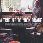 In Search of a Master, in Search of a Slave: A Tribute to Nick Drake