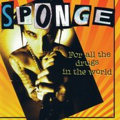 Sponge-For All the Drugs in the World