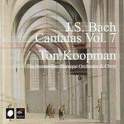 J.S. Bach Cantatas Vol. 7