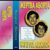 Wavepool Abortion