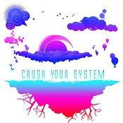 Rawkus 50 Presents Crush Your System