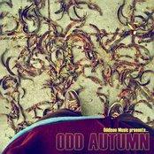 Odd Autumn