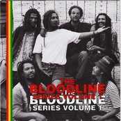 The Bloodline Series : Reggae Roots from South Africa, Vol. 1 (The Bloodline Series Vol 1)