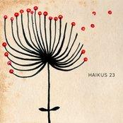 HAIKUS 23