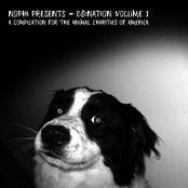 Do:Nation Compilation for Animal Charity
