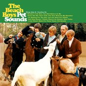 The Pet Sounds Sessions (disc 1)