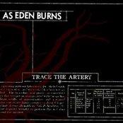 Trace The Artery