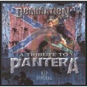 A Tribute to Pantera