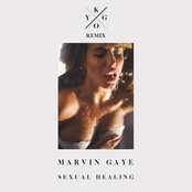 Sexual Healing (Kygo Radio Edit)