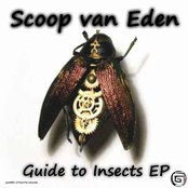 Guide to Insects EP - syn009