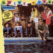album Dolce Vita by Spider Murphy Gang