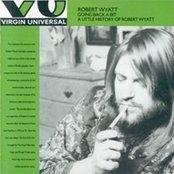 Going Back a Bit: A Little History of Robert Wyatt (disc 2)
