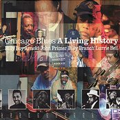 Chicago Blues - A Living History