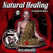 Natural Healing Volume 2