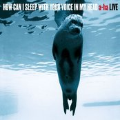 How Can I Sleep With Your Voice In My Head (a-ha Live) - Double Album