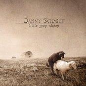 Little Grey Sheep