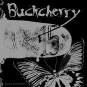 15 / Black Butterfly