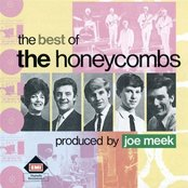 The Best Of The Honeycombs
