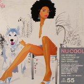 Hed Kandi Presents Nu Cool