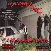 Gang Banging Poetry: The Sequel