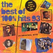 100% Hits: Best of 1993