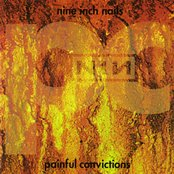 Painful Convictions (disc 1)