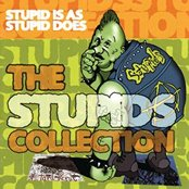 Stupid Is As Stupid Does: The Stupids Collection