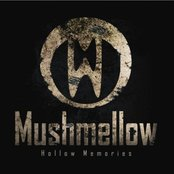 Hollow Memories (LP) 2008