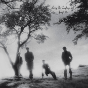 album Sorry for Laughing by Josef K