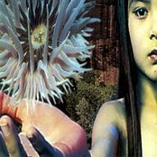 Lifeforms (disc 2)