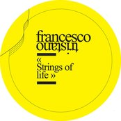 Strings of Life (IF2001)